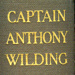 Book: Captain Anthony Wilding by A. Wallis Myers 1916; A. Wallis Myers, Hodder & Stoughton; 1916; 2012.124.1