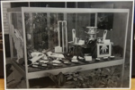 Photograph: Trophy Cabinet - Cricket Nov 1983 ; Shell Photographic Unit; c.1983; 2018.14.9