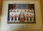 Photograph: Wellington Women's 1st XI Cricket Team ; C.1977; 2018.5.10