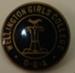Badge: Wellington College Old Girls Cricket Club ; 2017.36.77