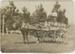 Photograph, Dan Brick with horse and milk cart; Unknown photographer; 1920-1930; RI.P0000.294