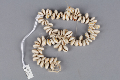 Necklace, Cowrie shell; Unknown maker; Pre 2006; RI.RT210