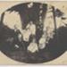 Photograph, Clayton, Pickett and Blomfield Families; Unknown photographer; 1900-1910; RI.P5.92.61