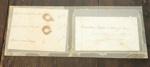 Human hair samples; Aug 1862; XHC.189.2