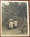 Photograph; c. 1900-1920; XCH.1582