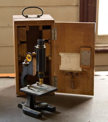 Microscope; Leitz (German, estab. 1913); XTS.3002