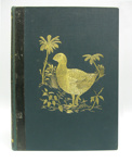 Book, History of the Birds of New Zealand;  Sir Walter Buller; 1994.3724.698