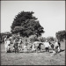 Photograph, 'Children at Play (Mataura School Children)'; Westra, Ans; 1996; ESC.96.002