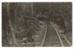 Postcard, Sawmill Tramway, Waikawa; Alma Studio, Invercargill; 1900-1915; WW.1984.652.a