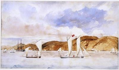Nelson Regatta, 1843, AC 959