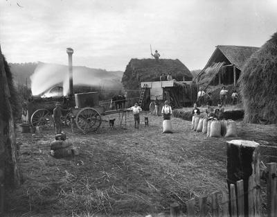 Winn's threshing machine, circa 1890, T 180685/3