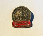 NZ Fire Brigade Life Member Badge     ; c1977; 2014.700.118