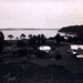 Photo: Russell from hill at back of town  (c.1911-1912). ; Winkelman; 97/878