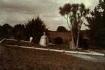 Cairn, Waihi Cemetery; PH2012.0076