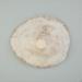 Mollusc shell: Giant limpet shell, Scutellastra kermadecensis; Frances Shakespear; 2015.232.136
