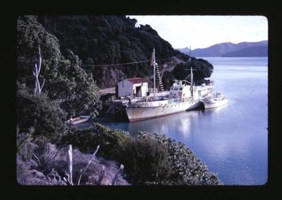 Slide: 'COLVILLE, Port Fitzroy'; Reginald Squire; 2015.63.20