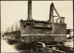 Photograph: Marine growth on the west end and north side of Victoria Wharf Vehicular Pontoon, 1923.; Auckland Harbour Board. Engineer's Dept.; 2010.132.320