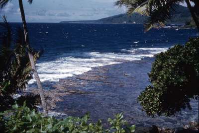 Slide: View of coast; Sybil Dunn; Keith Dunn; 2013.264.204