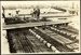 Photograph: Western Wharf Extension, 1926.; Auckland Harbour Board. Engineer's Dept.; 2010.132.125