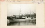 Index card: MAORI (1867), in Samoa Shipping and Trading Co. Ltd. colours.; Bill Laxon