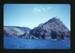 Slide: 'Cuvier Island'; Reginald Squire; 2015.63.22