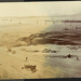 Photograph: Reclaiming Freemans Bay, 1908.; Auckland Harbour Board. Engineer's Dept.; 2010.132.360