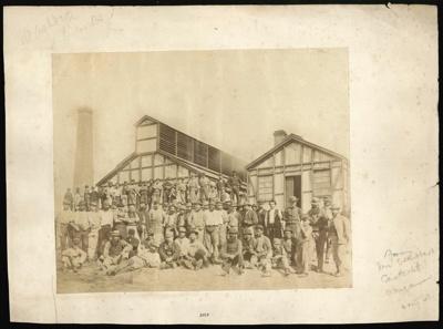 [Boiling Down Works Staff, Washdyke, Timaru]; 1870-1890; 3555