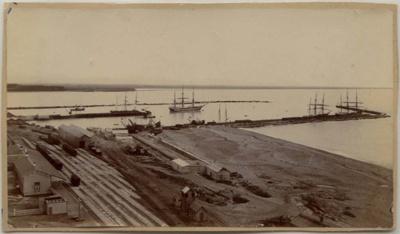 [Timaru Harbour]; Ferrier, William; 1889-1898; 0599