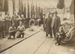 [Sheep shearing class at Smithfield, Timaru]; 30/11/1915; 2005/001.01