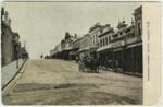 Stafford Street South, Timaru N.Z.; Ferrier, William; 1900-1906; 2177