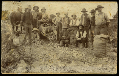 [First potato digger, Norton Reserve, Waimate]; 1910; 2970