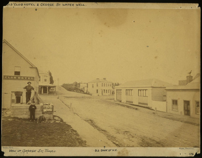 [Flockton Well, corner of George St and the Great North Road]; Burton Brothers, Dunedin; 1868; 2102