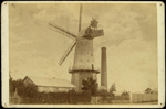 [Parr's Windmill, Timaru]; Ferrier, William; 1872-1888; 1143