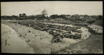 [Cars parked on Caroline Bay]; 1936-1946; 0074