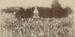 Photograph, Unveiling of the Otautau War Memorial; McKesch, Henry John; 1922; OT.2010.59