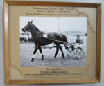 Race horse & Driver - Oamaru Trotting Club; 1970; 01/2007/1012