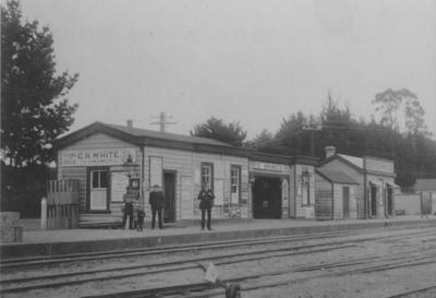 Te Awamutu Railway Station; PH6408