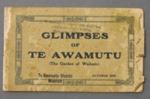 Glimpses of Te Awamutu, Waipa Post, Oct 1916, PA16