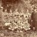 Kia Toa Rugby Football  team, winners of the Horowhenua Championship 1909-10; Alf Morto; 1910; 2006.277.01