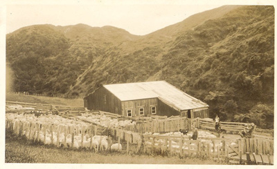 Ratanui Woolshed, 1930s; 2009.083.01