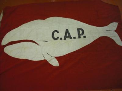 Flag; SGHT.2010.9