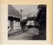 CAT STREET 1950s, EHHTM-2009-01734