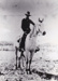 Photograph - Stockman on horse.; c 1990; 18940