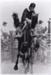 Photograph - Brian Bernays riding a wild horse in Julia Creek.; John Thompson; 1981; 18833