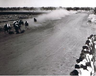 Photograph - Horse Racing. ; 9179