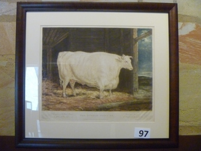 Framed print of Durham White Ox.; Garrard, George; 1813; 97