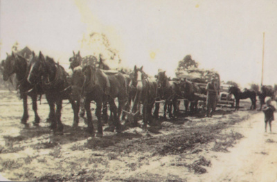 Photo - Horse team pulling wagon. ; c 1910?; 19892