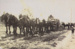 Photo - Horse team pulling wagon. ; c 1910?; 19892