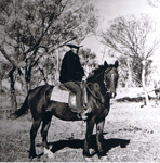 Photograph - Scotty Watson on horseback.; 9113