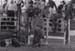 Photograph - Bull rider on ground having been thrown off the bull.; John Thompson; 1981; 18832
